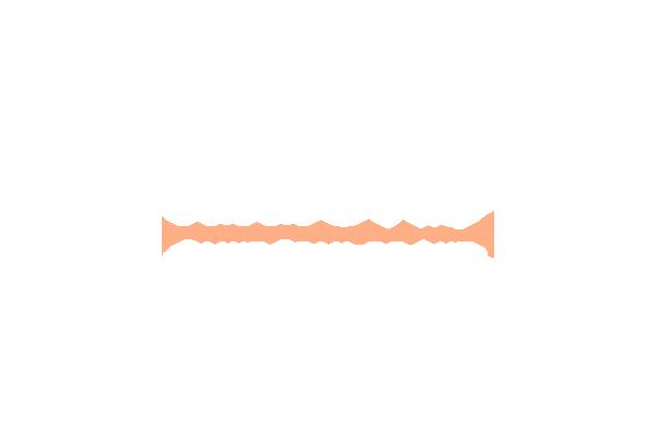 logo IMMO PLUS 64